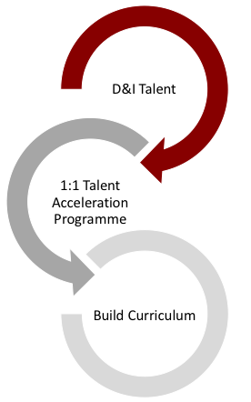 Talent acceleration programme